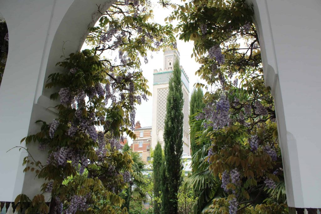 A photo of an archway covered in wisteria, with the minaret tower in the background, seen through the arch.